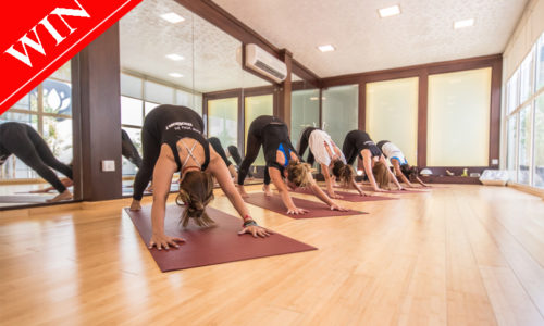 Win a week pass from Motion Ladies Fitness centre worth AED 500