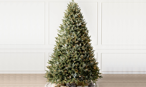 Win a Nordmann Fir Tree with delivery from Dubai Garden Centre worth AED 695!