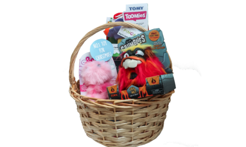 Win a toy hamper from PINCA Trading, worth AED 500!