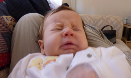 Pets and Infant Allergies