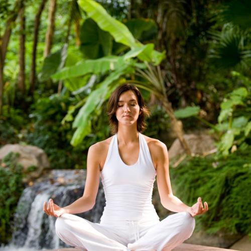 Meditate Through Gardening