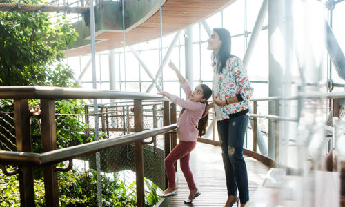 Kids get FREE entry to The Green Planet this Ramadan!