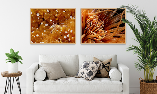 WIN AN INKOPIA PHOTO WALL ART GIFT VOUCHER, WORTH AED600