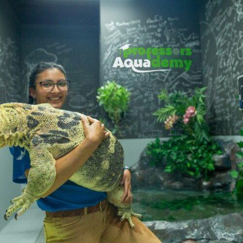 Nominate a teacher to host a class from The National Aquarium