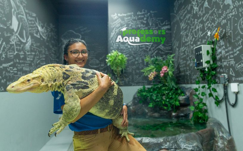 Professor, the water monitor lizard, at The National Aquarium in Abu Dhabi